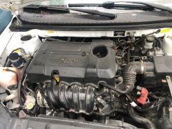 Geely Emgrkomple motor